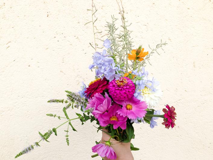 flores en agosto