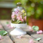 CAMPANA PEDESTAL flor preservada