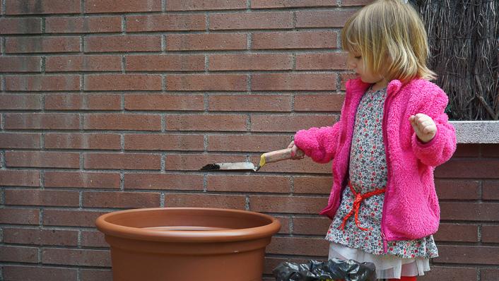 Como plantar rosales ingleses