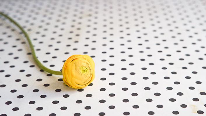 diy-arreglo-floral-portada-1-5