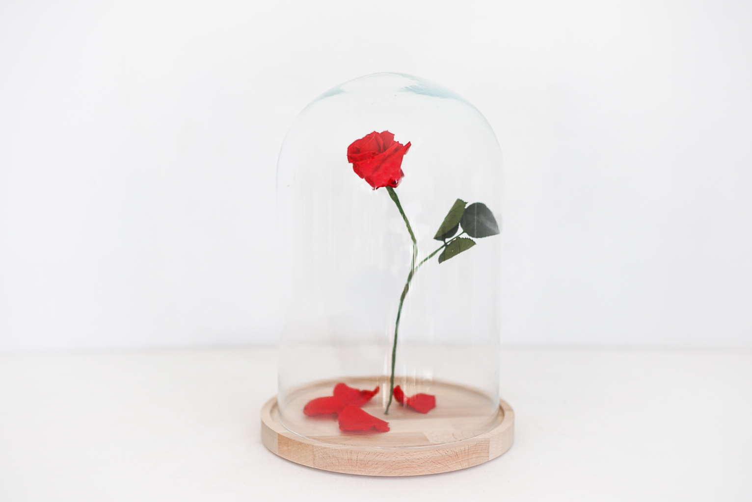 campana-bella-y-bestia-rosa-roja