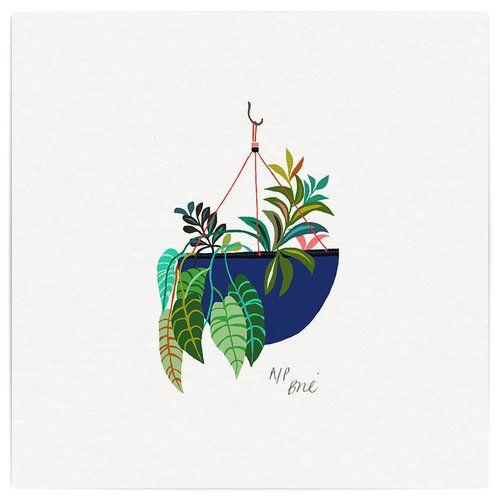 ilustración planta brie harrison