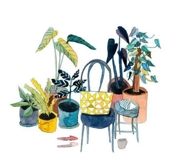ilustración plantas elisabeth barnett