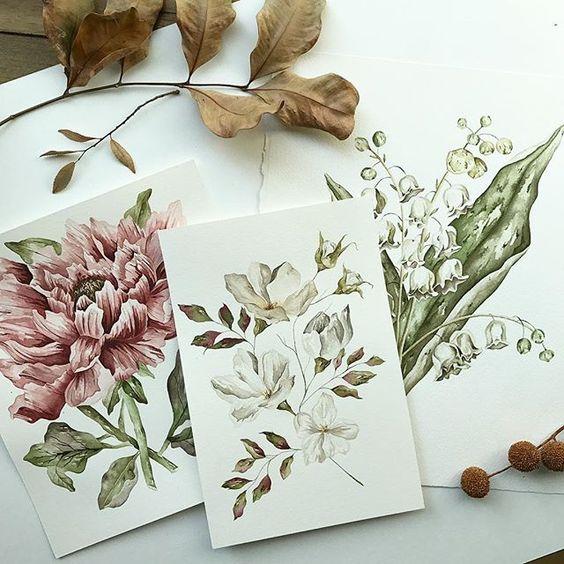 ilustración botánica mollusk