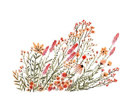 ilustración botánica vikki chu