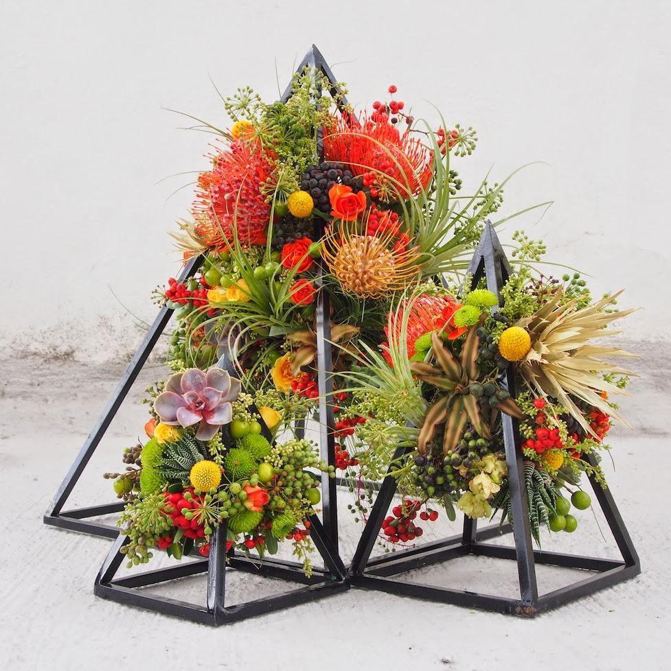 flores cosmos piramide