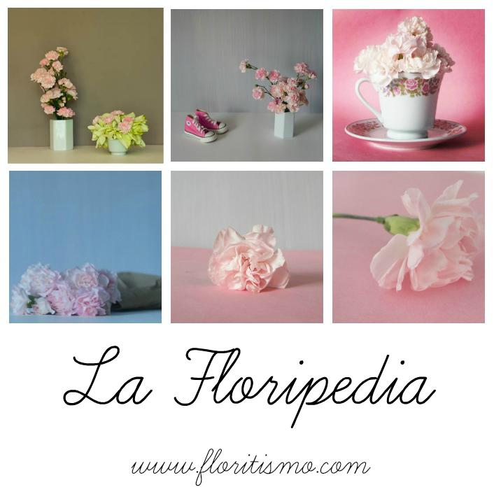La Floripedia