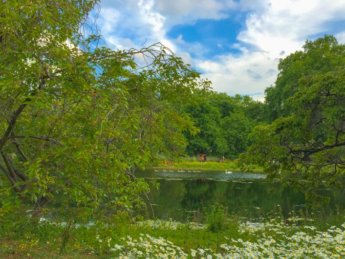 London-Saint James Park-6