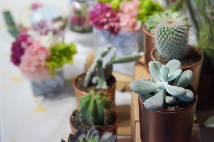 Super Cooper Cactus