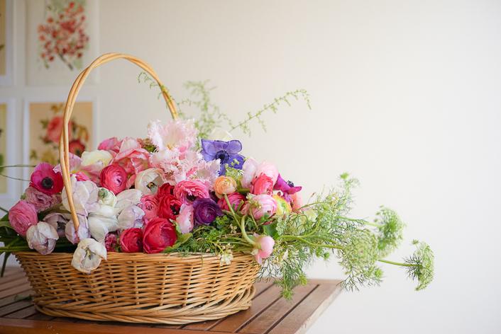 Cosecha flores ranúnculos