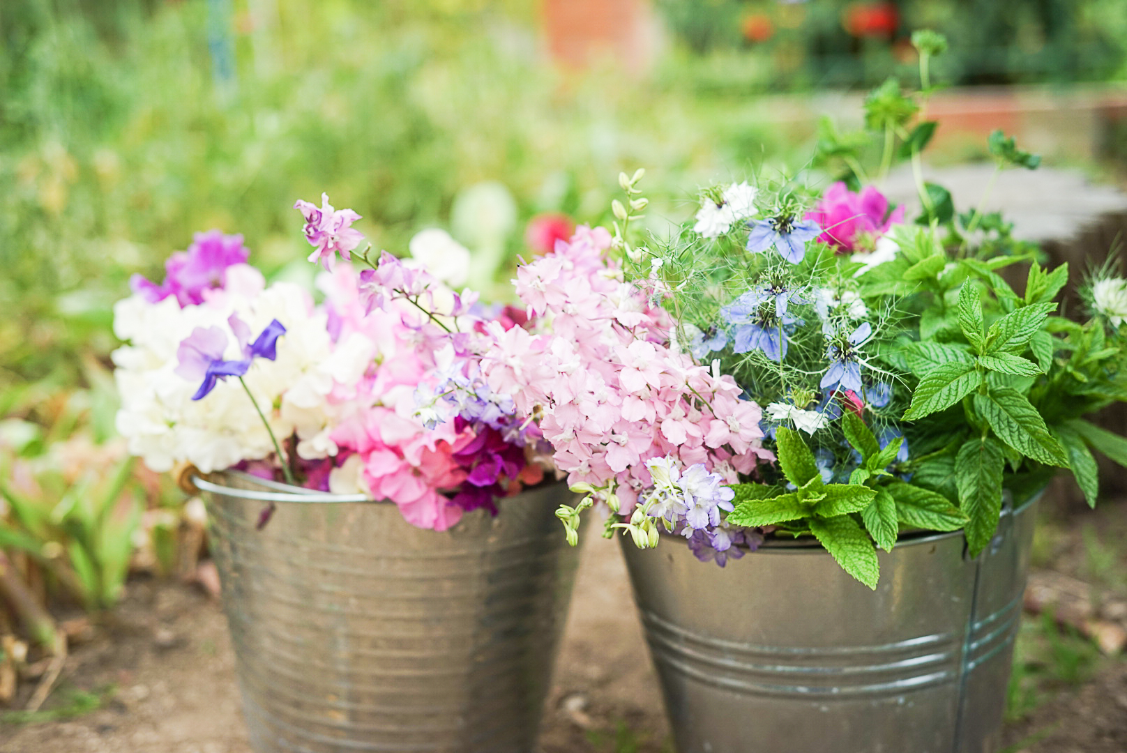granja de flores