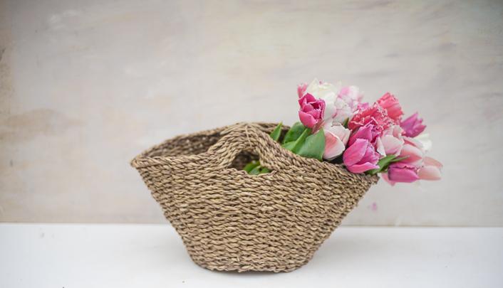 tulipanes cultivo-13