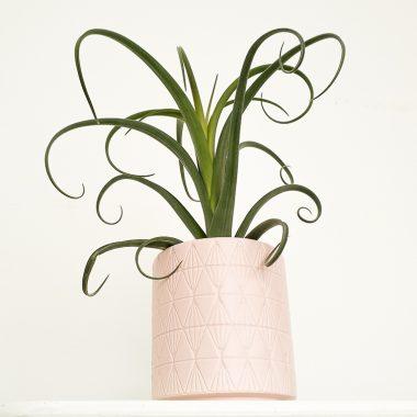 Macetero Rosa Labrado - Floritismo