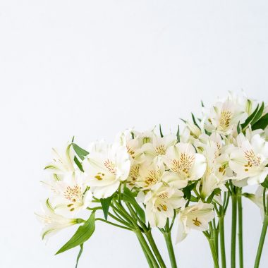 Ramo Alstromerias - Floritismo